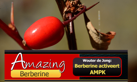 Berberine tegen diabetes type 2