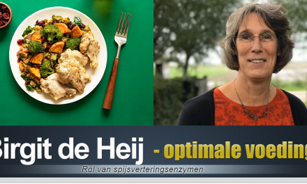 Optimale vertering