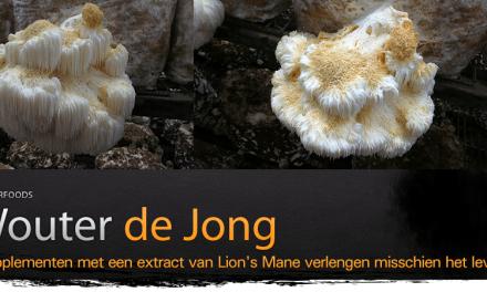 Lion's Mane als breinbooster
