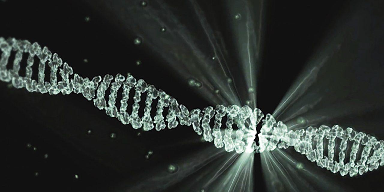 Nucleotiden – essentiële bouwstoffen