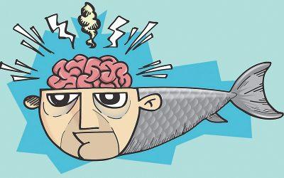 Uitleg over omega-3-vetzuren